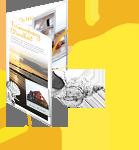 PFD Broschüre zum Download